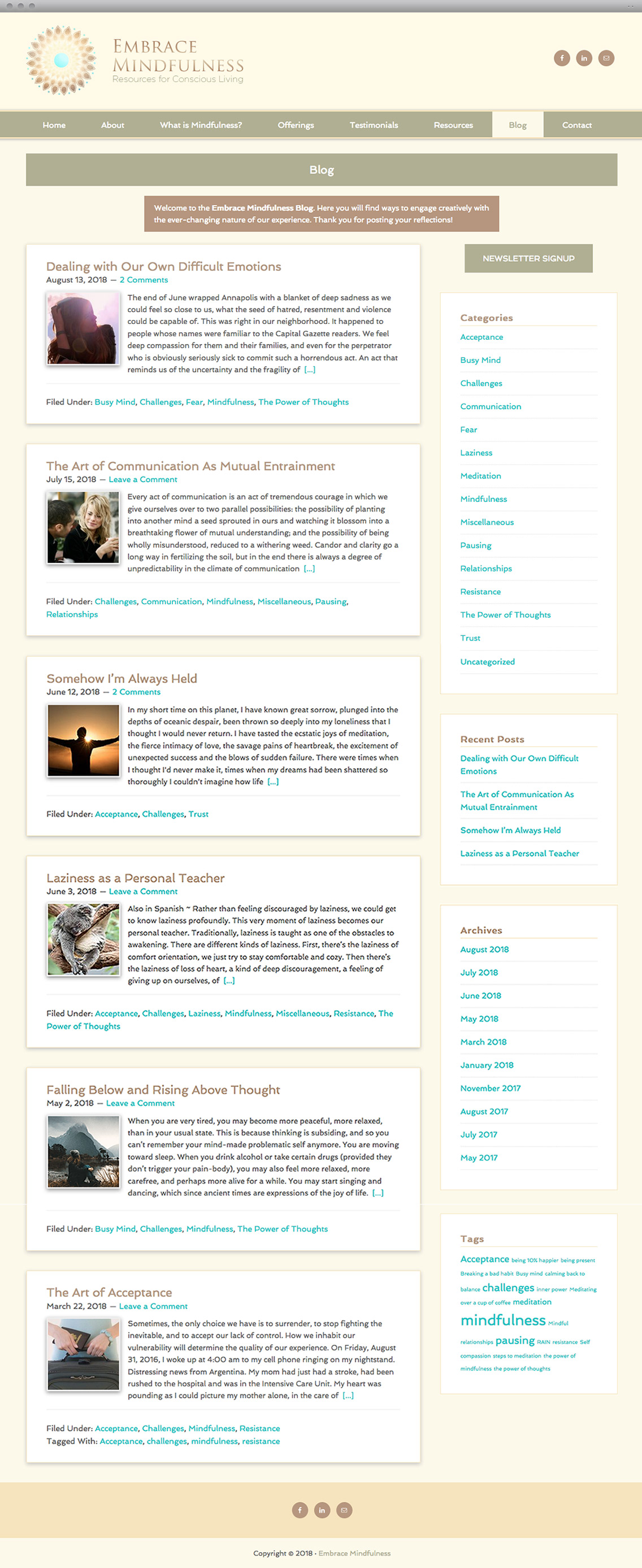 Embrace Mindfulness Content Page